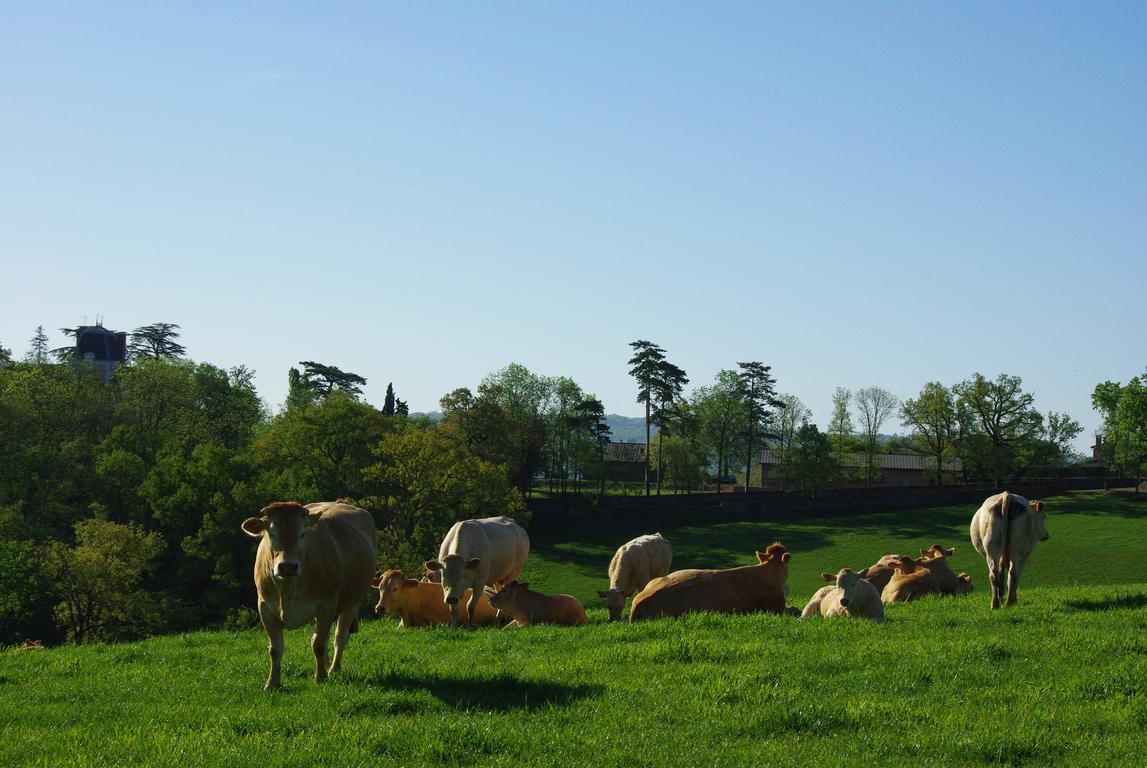 Aides chambre d 39 agriculture aveyron - Chambre d agriculture d auvergne ...